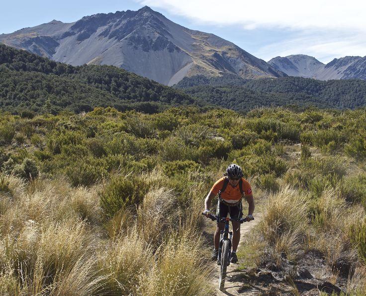 Bike through the beautiful Craigburn Ranges on the South Island Mountain Bike Adventure