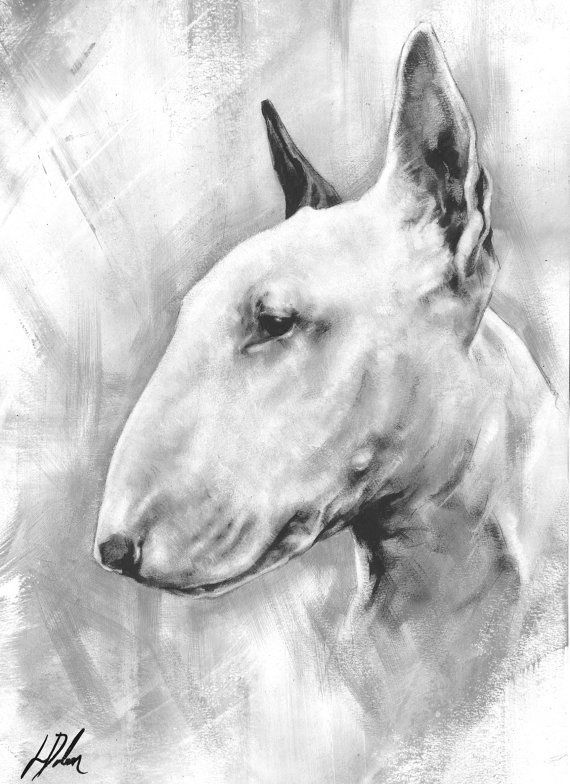 Unique Original Painting Of An English Bull Terrier By Ldolanart