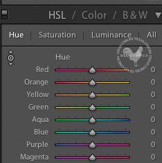HSL and Luminance adjustments