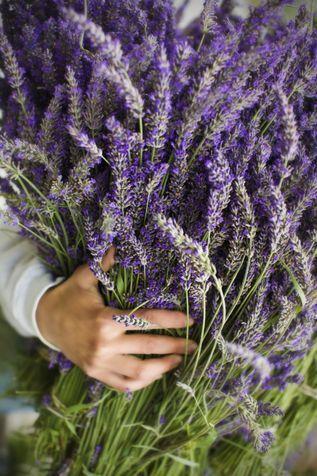 5 ricette fai da te per un detersivo naturale - Fai da te - Donna Moderna