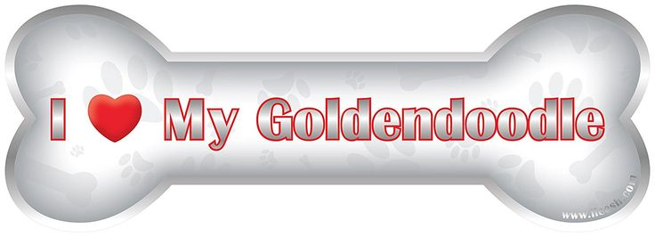 iLeesh i Love My Goldendoodle Bone Car Magnet, Reflective Chrome ** Click image to review more details. (This is an affiliate link and I receive a commission for the sales)