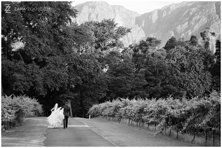 This couple photo was taken in the vineyard street of Molenvliet Wine and Guest Estate in #Stellenbosch. Molenvliet is one of the top 10 #weddingvenues in #CapeTown.  Read our full venue review on the ZaraZoo Blog http://www.zara-zoo.com/blog/molenvliet-venue-review/