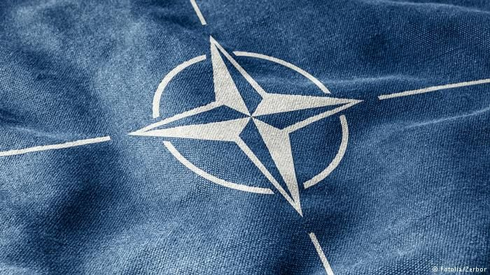Nato Logo Fotolia Zerbor University Studying In A Nutshell Need To Know