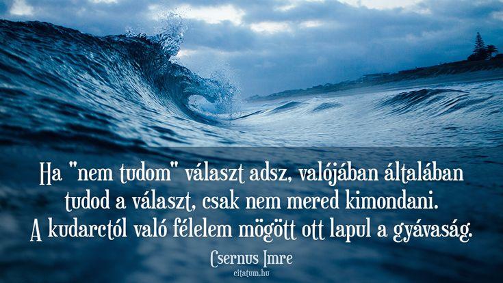 Csernus Imre idézet a gyávaságról.