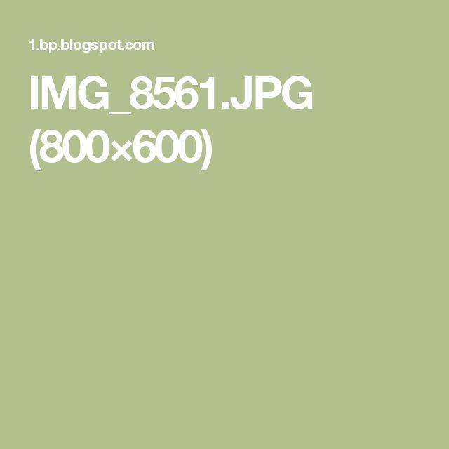 IMG_8561.JPG (800×600)