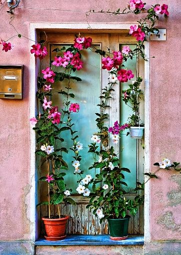 Floral Door in Caorle | Shake Your Tail Feather Inspiration