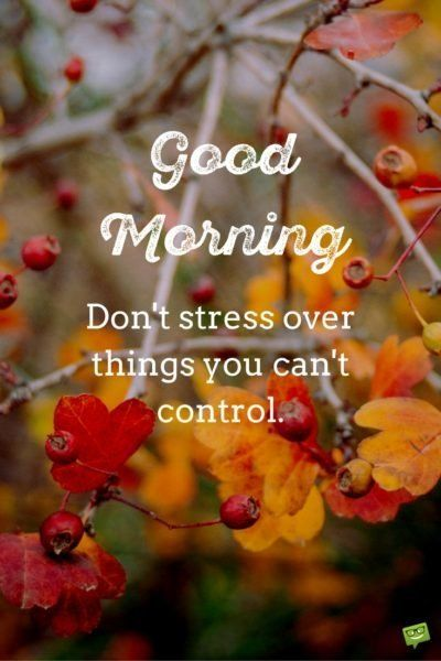 Good morning. Don't stress over things you can't control.