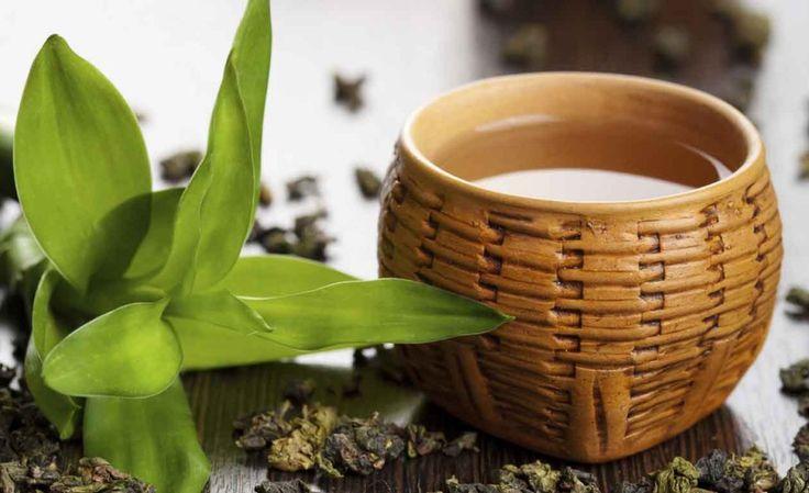 Os 12 Benefícios do Chá de Oolong Para Saúde | Dicas de Musculação