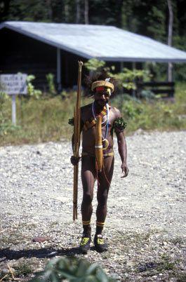 Transmigran lokal Papua (asalnya dari daerah dataran tinggi, pindah ke Dataran rendah)