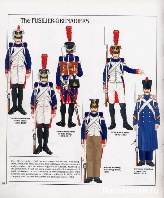 French; Imperial Guard, Fusilier Grenadiers, Other Ranks