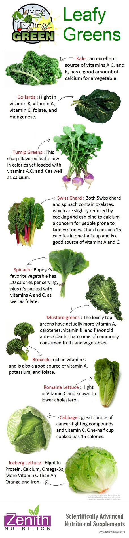 Leafy Greens - Kale, Collards, Turnip greens , Swiss Chard, Spinach, Mustard greens, Broccoli, Romaine, Lettuce, Cabbage, Iceberg lettuce. Best supplements from Zenith Nutrition. Health Supplements. Nutritional Supplements. Health Infographics
