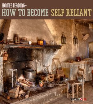 how to become self reliant through homesteading prepping
