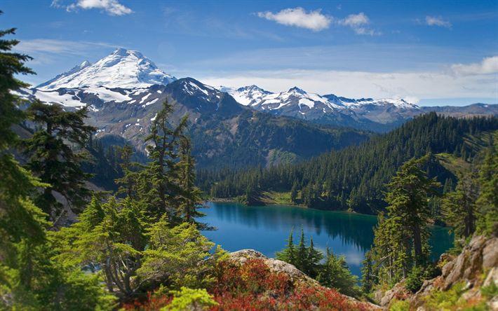 Descargar fondos de pantalla América, verano, montaña, bosque, lago, estados UNIDOS