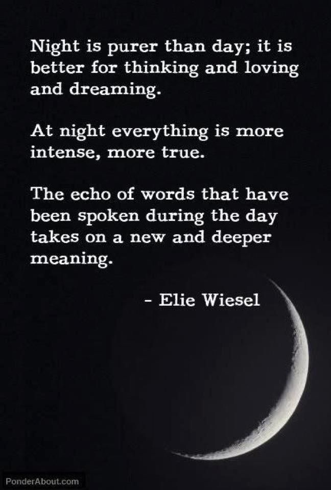Night By Elie Wiesel Quotes With Page Numbers Enchanting 101 Best Elie Wiesel Images On Pinterest  Elie Wiesel Israel And . Review