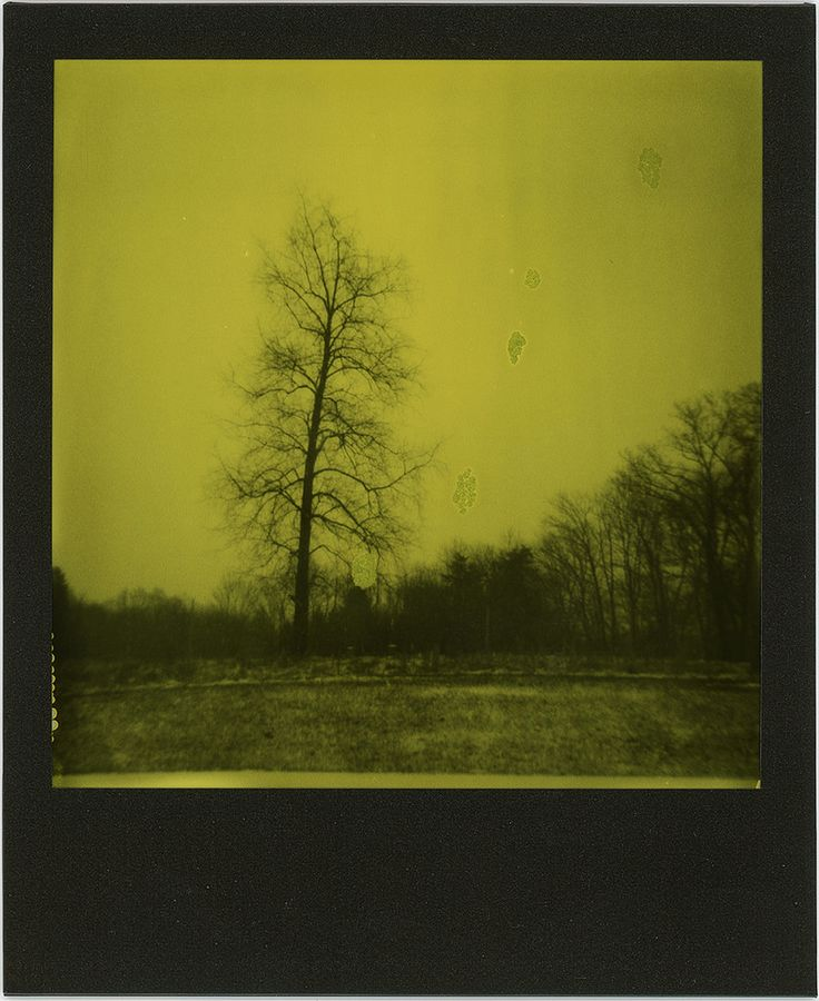 https://flic.kr/p/22X9pWS | instant apocalypse I | Polaroid 636 + Impossible Project Black&Yellow type 600 film