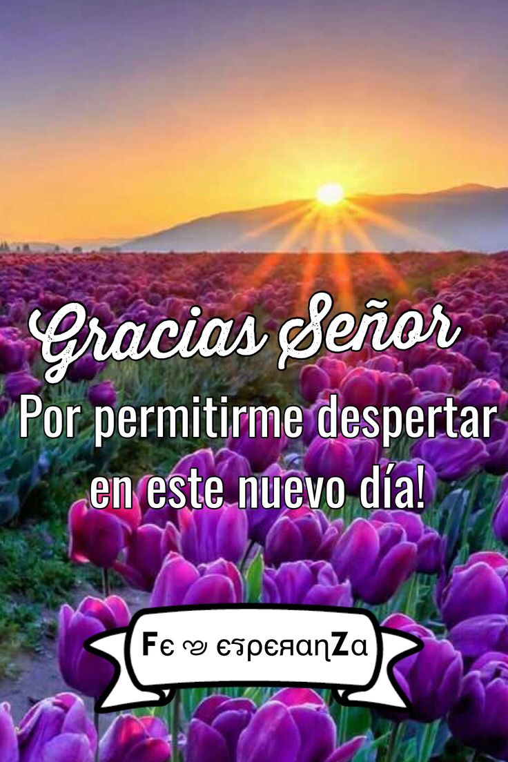 1109 best Buenos Dias images on Pinterest | Spanish quotes