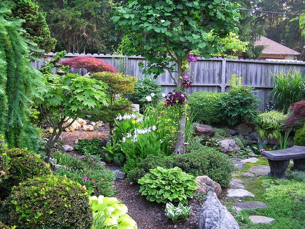 Small space asian garden a variety of beautiful well kept for Japanese garden bushes