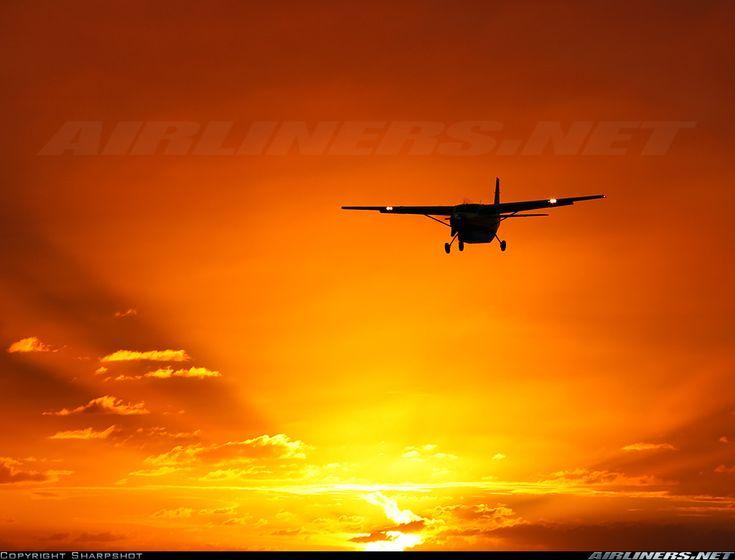 عشق من پرواز