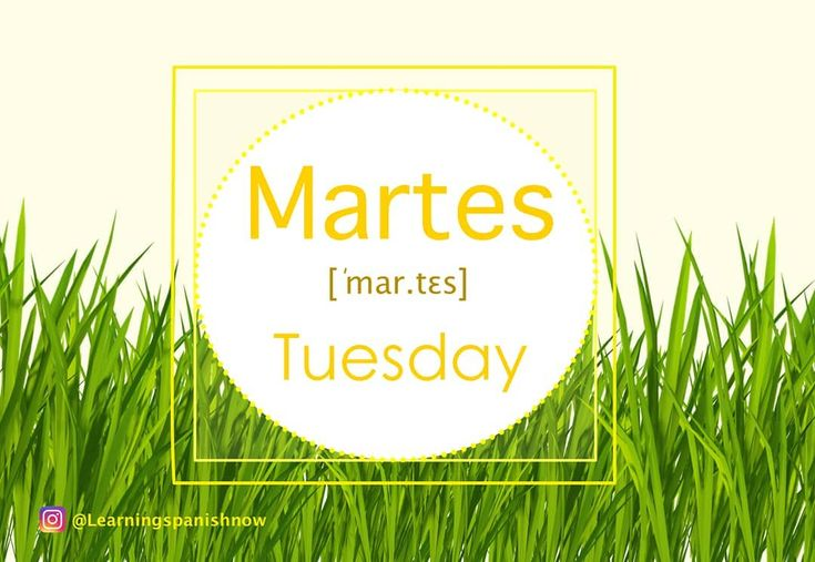 !Hoy es martes! Today is Tuesday!  As you can see from the image the word martes means Tuesday in Spanish.  For this Tuesday keep working on what you started on Monday. You can do it! ________________________________ #learningspanishnow, #tuesday, #happyday, #greengrass, #martes, #youcandoit, #keepworking, #yellow, #grass, #spanish, #espanol, #spanishisfun, #itsuptoyou, #tercafeira , #spanishvocabulary, #yacasiesmarzo, #dienstag, #mardi