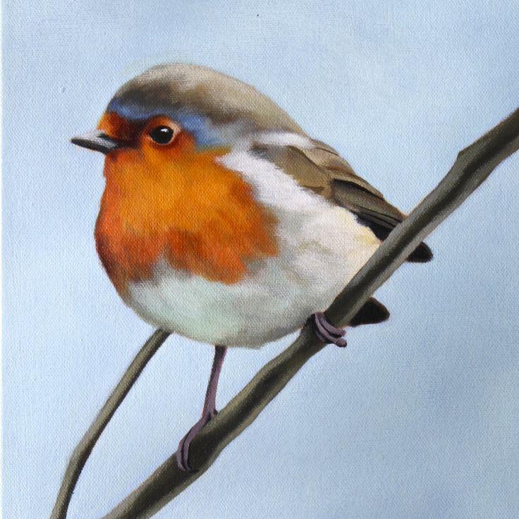 robin, by stephanie woodman nz