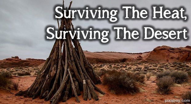 Surviving The Heat, Surviving The Desert Survivopedia  Not planning on going to a desert.Ever.It is an interesting read though.