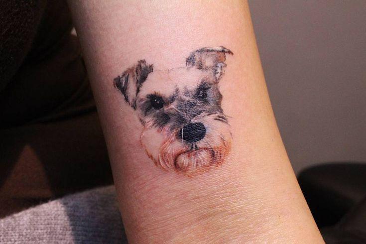 Artista Tatuador: Victoria Yam. Tags: categorías, Acuarelas, Retrato, Ilustrativo, Animales, Perros, Schnauzers. Partes del cuerpo: Biceps.