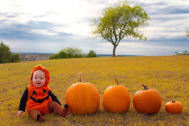 Baby Pumpkin-002 by thenerdswife, via Flickr