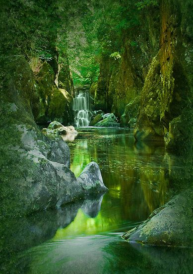 The Fairy Glen , a secluded gorge on the Conwy River near Betws-y-Coed, North Wales.