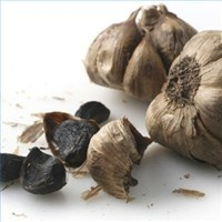 oddly enough they have a pretty clear black garlic recipe here....wondering if I can borrow an incubator for chicken from my neighbors and use it or making black garlic food