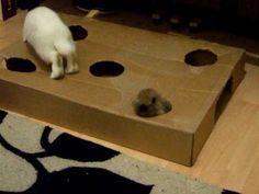 Rabbit toys- BEST TOY PIN!!