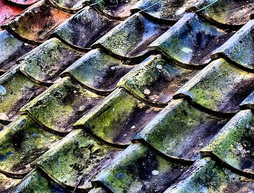Japanese roof tiles