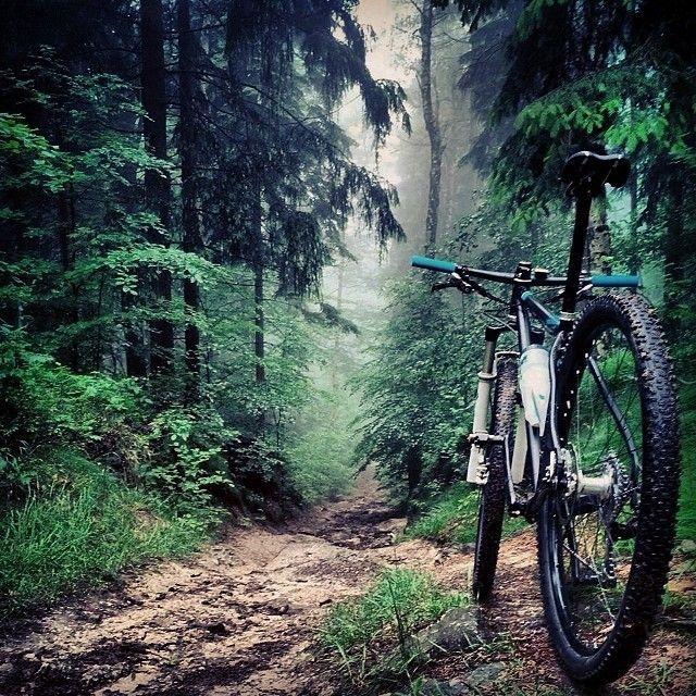 Bikes bridges Beer — Es gibt kein schlechtes Wetter zum Radfahren....