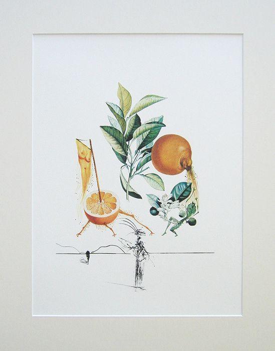 Сальвадор Дали. Эротический грейпфрут, 1979. Цветная литография. Серия FlorDali Les Fruits | 18 000 р.