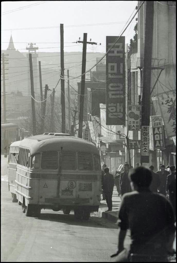 1966년