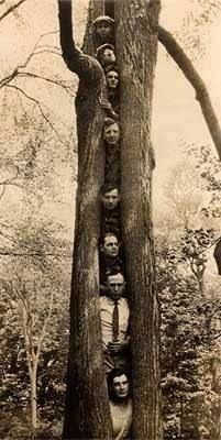 Wacky photos: What's going on? Go ahead, add a caption! (Could be a family tree?) Scan your past (whether wacky or not) with Pic Scanner Gold app https://itunes.apple.com/app/id1124131441