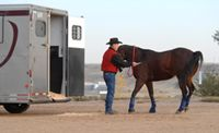 Trainer John Lyons gives do's and don'ts for five common trailer-loading problems.