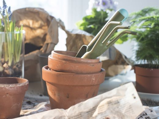 A close-up image of pots and gardening tools on a tabletop.