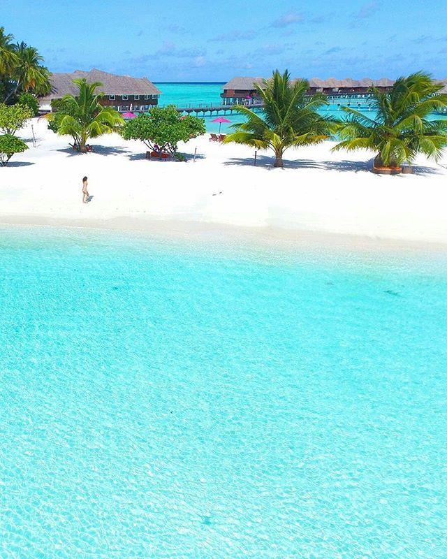 Best 25+ Aqua Resort Ideas On Pinterest