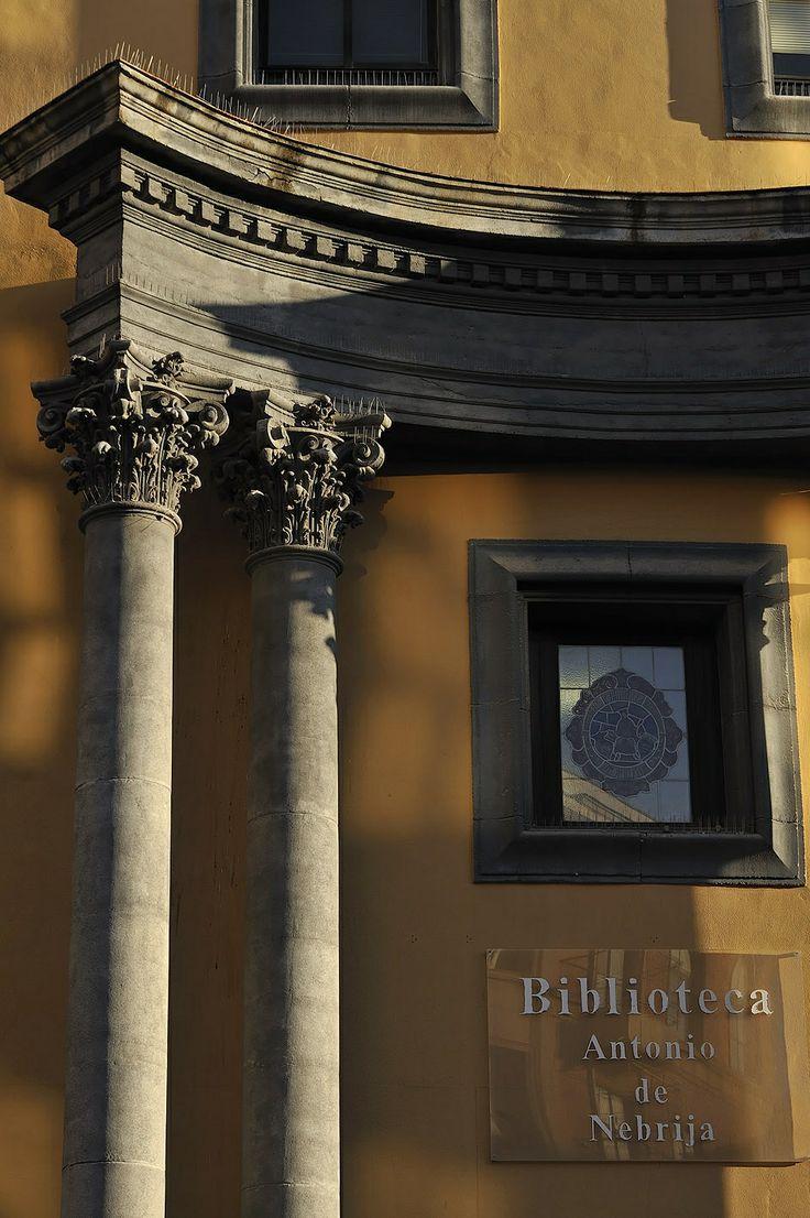 Columnas de la entrada