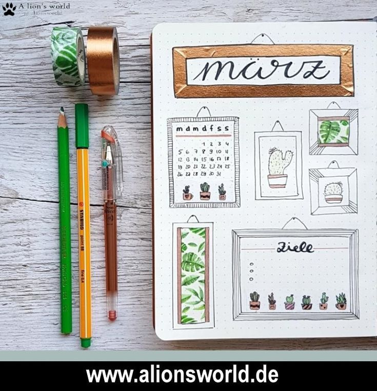 Bullet Journal – März Setup – Mein kleiner grüner Kaktus!