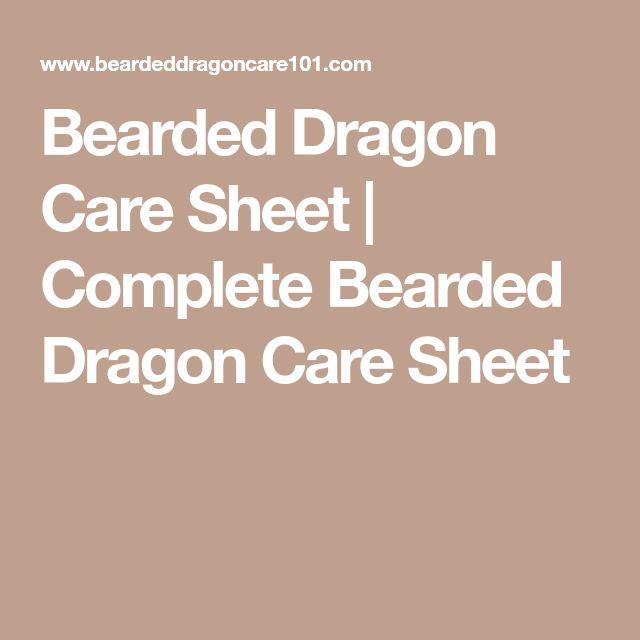 Bearded Dragon Care Sheet   Complete Bearded Dragon Care Sheet