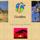 Giraffes - Fun Facts PowerPoint. Learn about giraffes! This giraffe PowerPoint has interesting and fun facts about the life of a giraffe. Can be us...