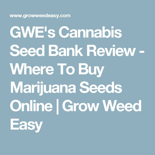 GWE's Cannabis Seed Bank Review - Where To Buy Marijuana Seeds Online | Grow Weed Easy