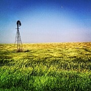 Kansas wheat field. Instagram --> buy prints, postcards, etc of this photo at Instaprints.: Photos, Instaprint, Postcards, Instagram, Buy Prints, Kansas Wheat, Wheat Fields