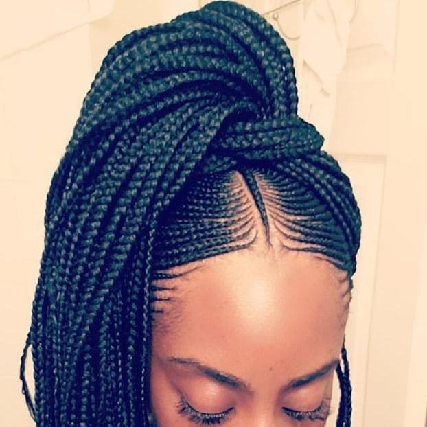 2019 braided hairstyle ideas