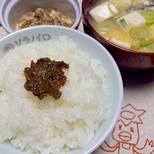 昨日作ったふきのとう味噌で夕ご飯。 ほろ苦い甘い味噌が美味しいです。  ここには映ってないけど、ホタテの稚貝も春の旬。  切り干し大根のサラダにヨーグルト納豆と健康的な夕ごはんですლ(⁰⊖⁰ლ)♡ - 52件のもぐもぐ - 春の夕餉(o⁰⊖⁰o)♡ by morimi32