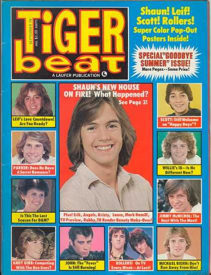 Tiger Beat - Essential reading in the '70s Does anyone have their copies of this magazine?