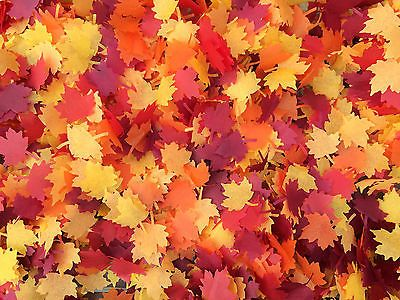 Autumn Maple Leaf Confetti Biodegradable Confetti Red Orange Yellow Burgundy in Home, Furniture & DIY,Wedding Supplies,Confetti | eBay