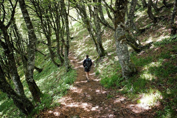 trek volcan Auvergne (9) #trek #auvergne #randonner