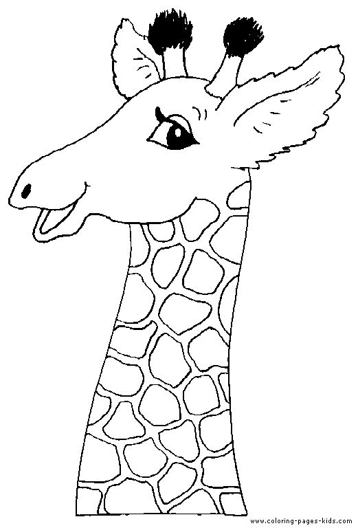1000  ideas about giraffe crafts on pinterest